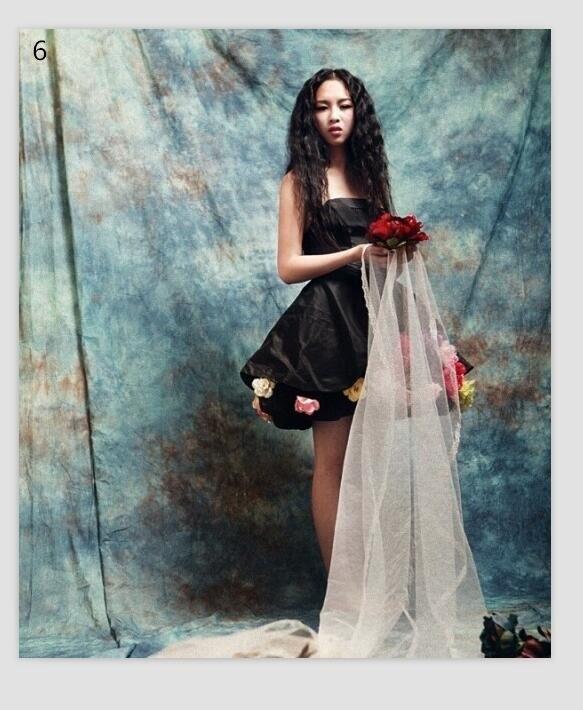 10x20ft Pro Teints Muslin toile personnalisée photographie wedding100 % coton Main Made imagination Vieux maître arrière-plans pour photo studio