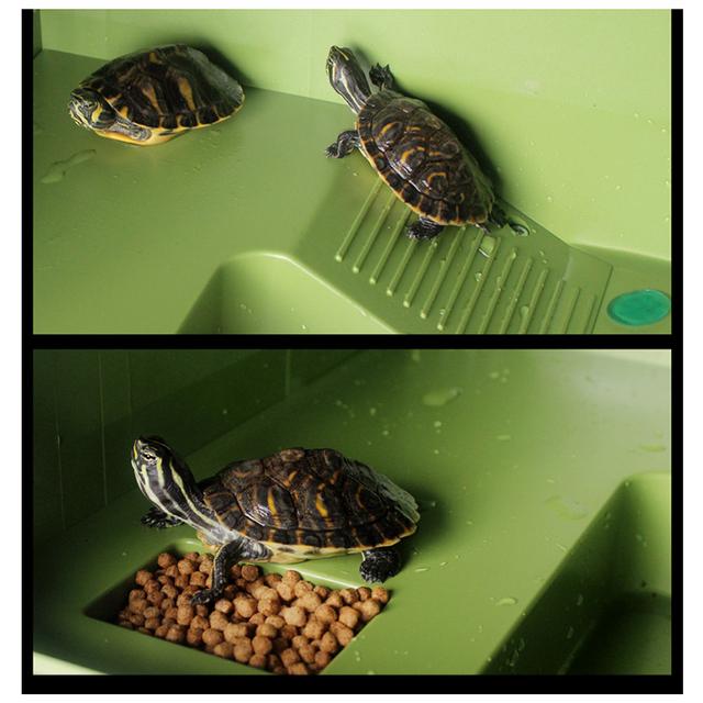 Petacc Turtle Basking Platform Floating High quality Turtle Pier Reptile Habitat with Ramp