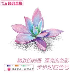 Image 2 - 새로운 컬러 연필 기본 자습서 도서: 23 스타일 succulents 아트 북에 배우기