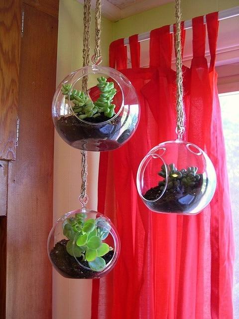 Aliexpress.com : Buy 3PCS/Set DIY Hanging Planter Vase With Air Plant Kits, Glass Globe Succulent Terrariums,Garden Bonsai/Garden Decor from Reliable  diy ... - Aliexpress.com : Buy 3PCS/Set DIY Hanging Planter Vase With Air