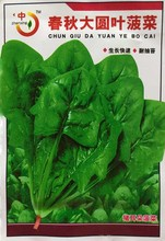 1 original pack 300+pcs spinach seeds, Salad Leaves Good Taste Non-GMO DIY Home Garden Plant vegetable seeds free shipping