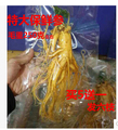 new  Fresh ginseng, wild ginseng soup for about 250 g single refs