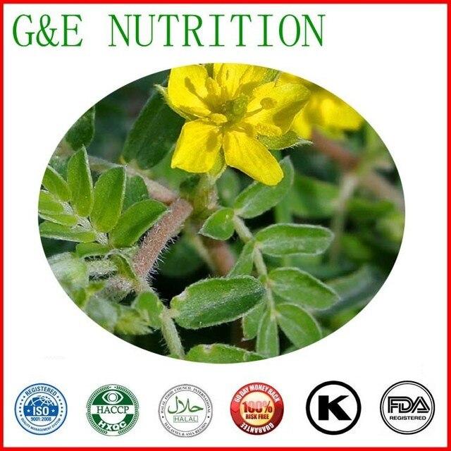 100% natural tribulus p.e. Saponins 40%, 60%,90%,95%1kg/bag