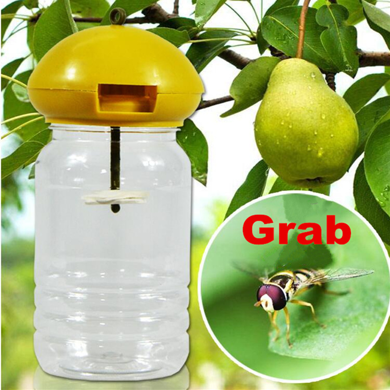 Fruit Fly Extermination Products - Year of Clean Water