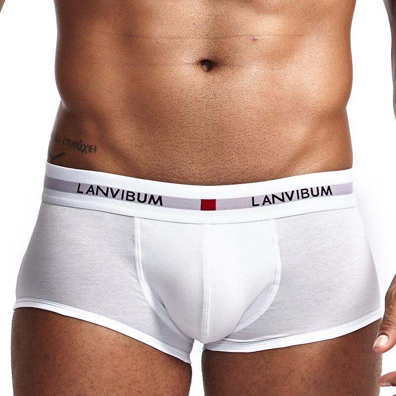 Boxershort Panties Man Boxers Comfort Underpants Modal Underwear Cotton Boxer Gay Boxer Spandex Boxer Men Gay Boxer Underpants
