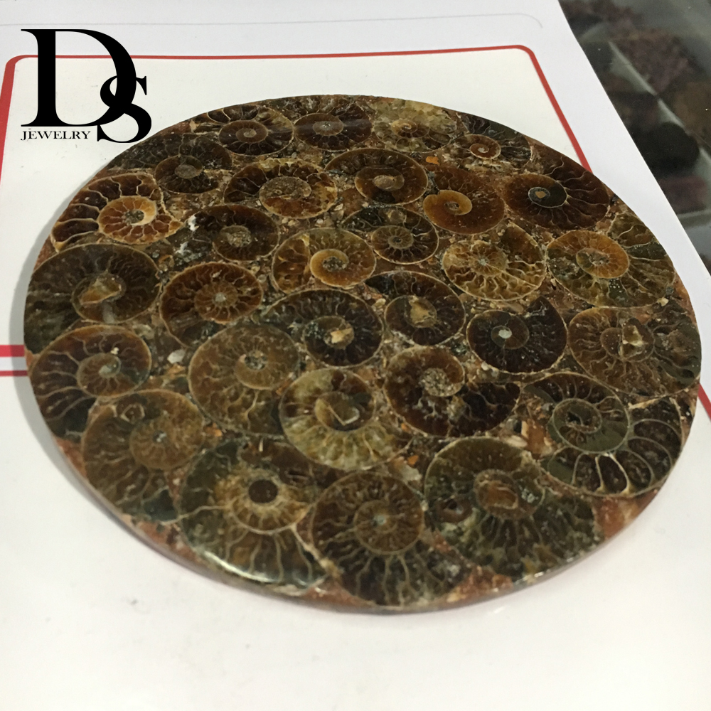 12cm Natural Ammonite Slice Plate Fossil Slices Ocean Snail Conch Stone Madagascar Mineral Specimen For Decoration Display in Stones from Home Garden