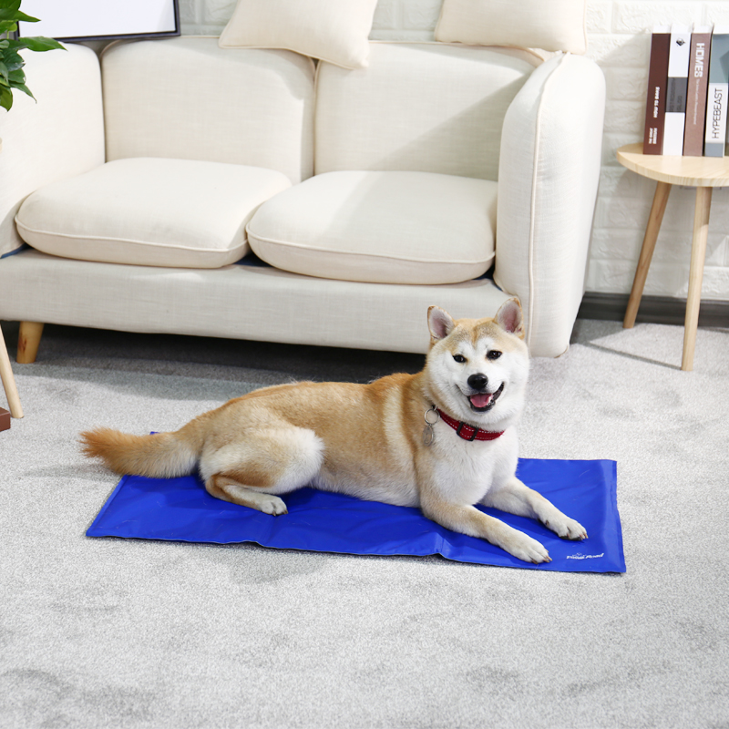 Pet Dog Ice Cooling Mat Freezing Safety Bed Summer Cat Mat Bed for Dog Cat Ice Cooling Pad Comfort Puppy Cushion Soft Breathable