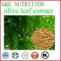 Discount better quality Olive Leaf Extract 20:1 100g