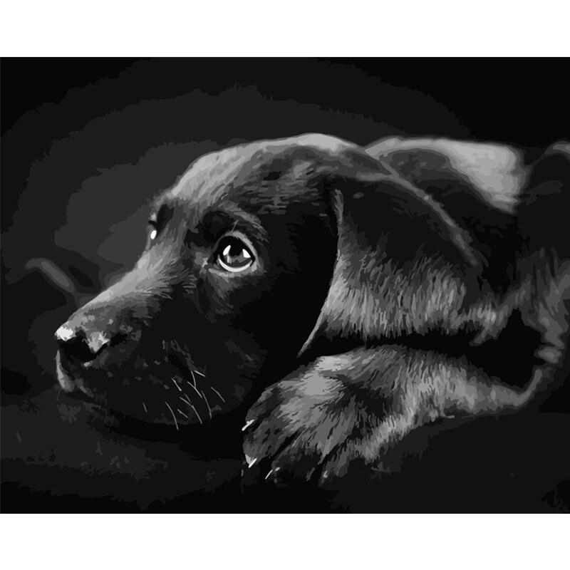 Black Labrador Retriever Dog Canvas Wall Art Print Painting Poster Animal Pet