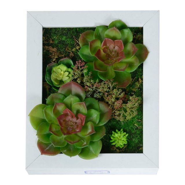 Tienda Online 3D Creative metope plantas suculentas cactus ...