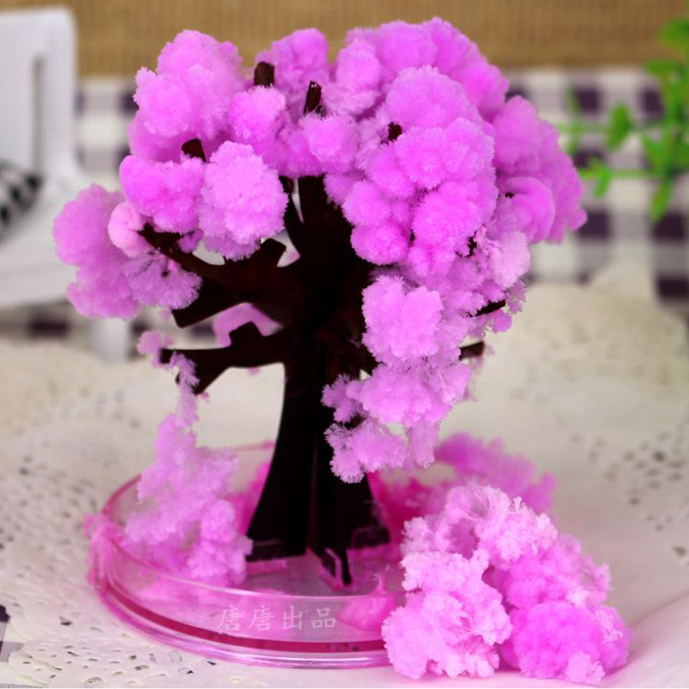 2019 9x8cm Pink Desktop Cherry Blossom Cool Japan!ThumbsUp!Magic Japanese Sakura Tree-Brand New Made In Japan Paper Trees Toys