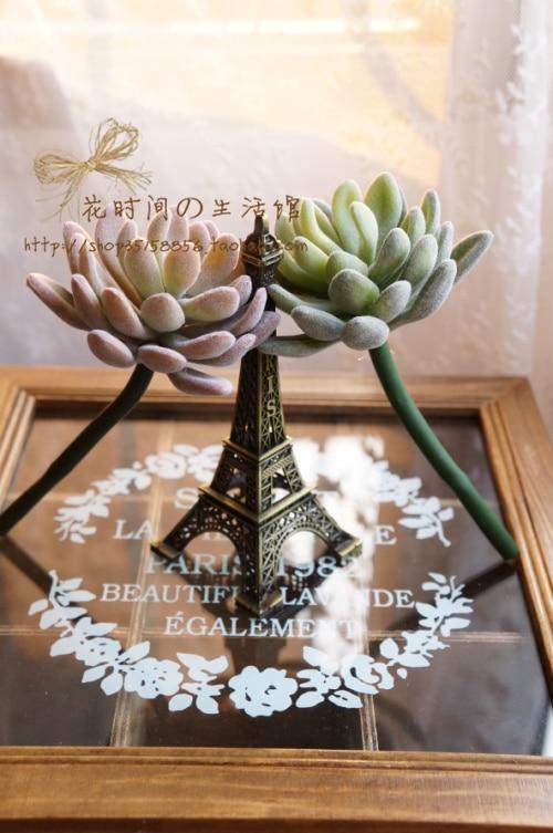 (6 ცალი / ლოტი) Succulents - დღესასწაულები და წვეულება - ფოტო 4