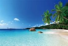 Laeacco Summer Tropical Seaside Photography Newborn Backgrounds Palm Tree Scene Seamless Photographic Studio Photo Backdrop Wall