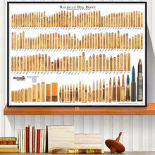 Bore Bullets Chart Details Canvas Art Print Painting Poster Wall Pictures For Room Decoration Home Decor Silk Fabric No Frame(China)