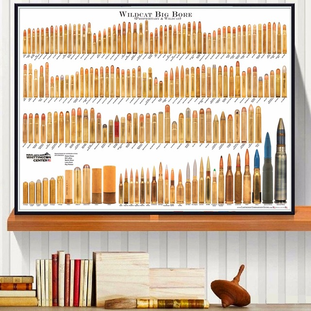 Bore Bullets Chart Details Canvas Art Print Painting Poster Wall Pictures For Room Decoration Home Decor Silk Fabric No Frame
