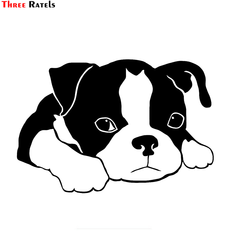Three Ratels TZ-1890# 15x22cm Boston Terrier Car Sticker Funny Car Stickers Styling Removable Decal