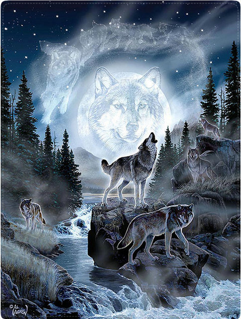 ZOOYA Diy diamond mosaic paint on canvas 3d diamond painting cross stitch kit diamond embroidery animal wolfs picture Craft gift
