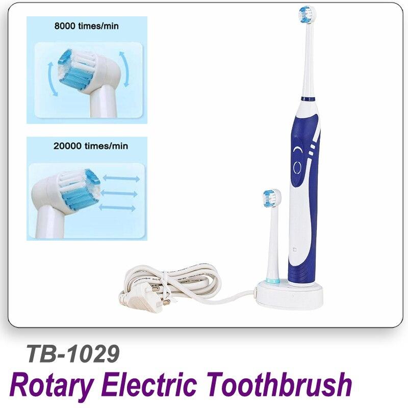 Cleaning The Oral Cavity. Efficient Pièce Porte-bonheur Chinois En Forme De Pendentif Sans Oeillet viii