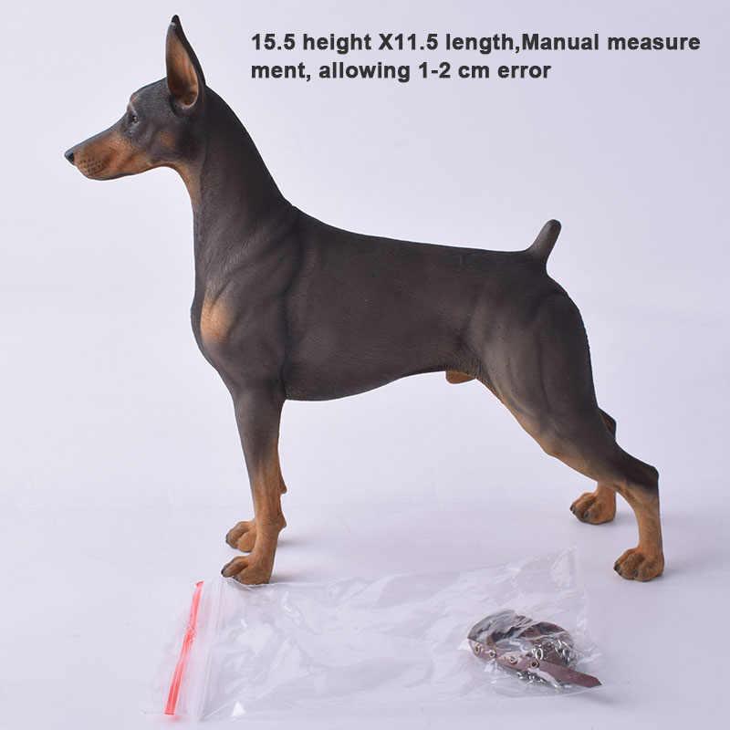 Mr. Z Real Animal Doberman 10th DB002 1/6 Alemão Estátua para 12 Polegada HT HOTTOYS figura de ação collectible MOS resina (Soft)