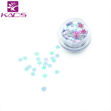 KADS 1PC/BOX Light Grey Snow Flake Design Nail Glitter Powder Dust Nail Art Design Powder UV Gel Polish Decoration Tool