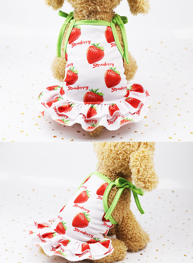 Fruit Print Little Dog Summer Dress (14)