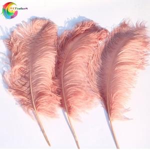 Image 3 - 10 adet büyük kutup tamamen doğal deri pembe devekuşu tüyü 24 26 inç düğün parti karnaval Prop dekorasyon tüyleri