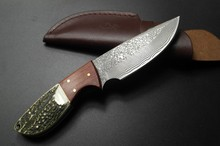 Handmade forged Damascus Steel hunting knife fixed knife Rosewood+ Antler with cowhide leather cover
