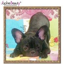 Sweet Dog Paintings Yorum Aliexpress Teki Sweet Dog Paintings