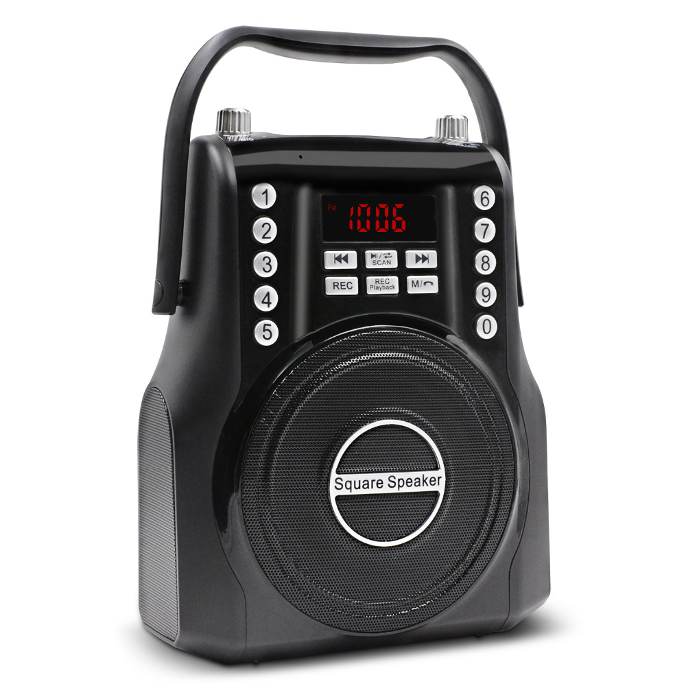 Lefon Portable FM Radio Sans Fil Bluetooth Haut-Parleur Puissant Amplificateur Stéréo MP3 Lecteur de Musique 3.5mm AUX Mains Libres Parler