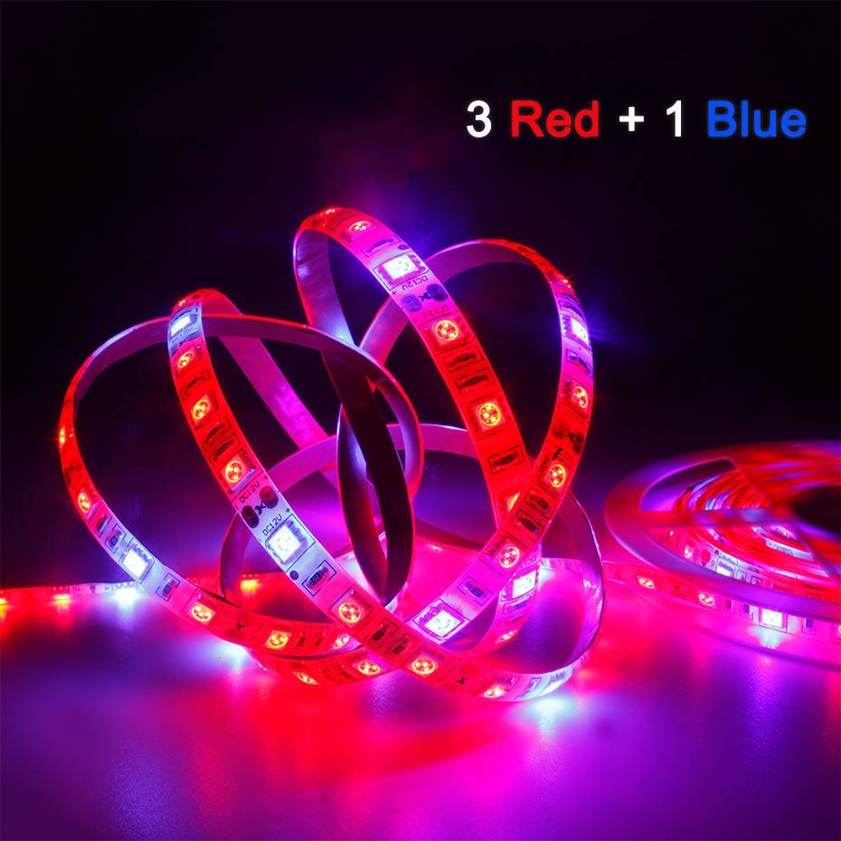 LED Grow Light Full Spectrum 5M LED Strip Light 5050 LED Flower Plant Phyto Growth Lamps For Greenhouse Hydroponic Plant Growing