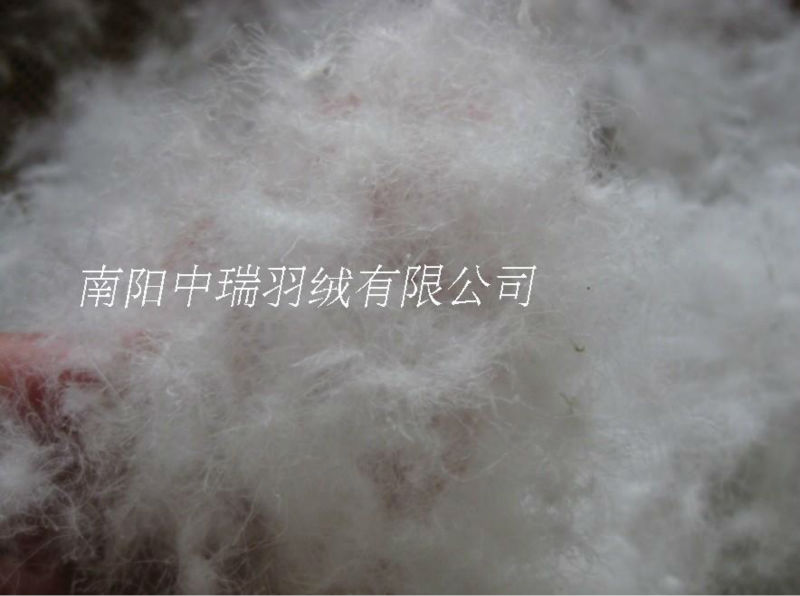 800 vulflow beste kwaliteit bulk vulling van 95 witte ganzendons jas jas semi vulling kussen quilt kussen sofa matras pad