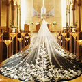 Boda Catedral de lujo Velo de 3 Metros de Dos Capas Con Apliques de Flores de La Gasa Mariage Tren Largo Velo Nupcial Por Encargo