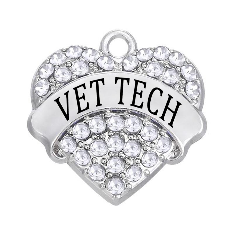 DOUBLE NOSE New Arrival Hot Sale 50 pcs lot Clear Crystal Heart Vet Tech Charm Jewelry