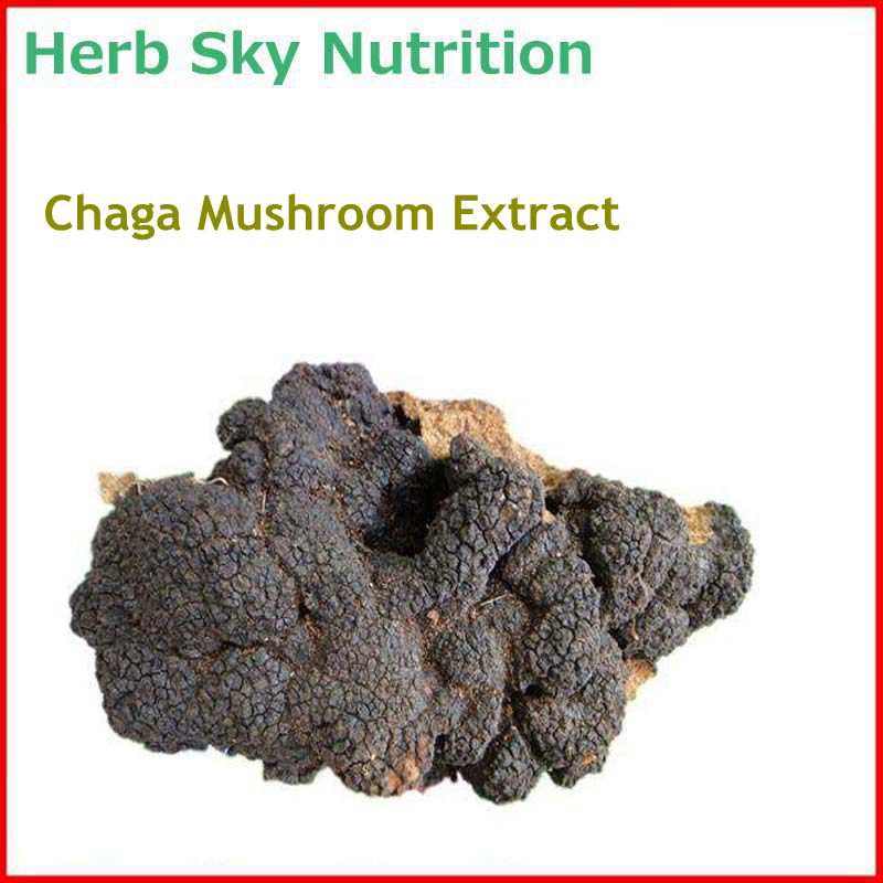 100% Natural& High quality Chaga Mushroom/ inonotus obliquus Extract with free shipping, regulating blood sugar natural water sorghum pigment extract 300g lot