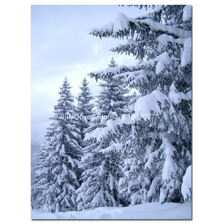 Snow Pine Trees Woods White Pines Picture Rhinestones Diamond