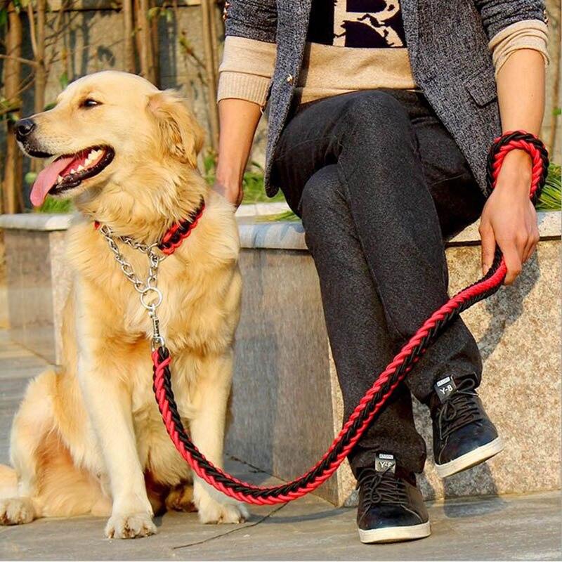 Design alla moda Del Collare Colorato Stereotipato Guinzagli Collari di Addestramento di Trazione Animale Domestico Corda Cane di Grandi Dimensioni Set Per Grande Medie Animali Domestici Cani