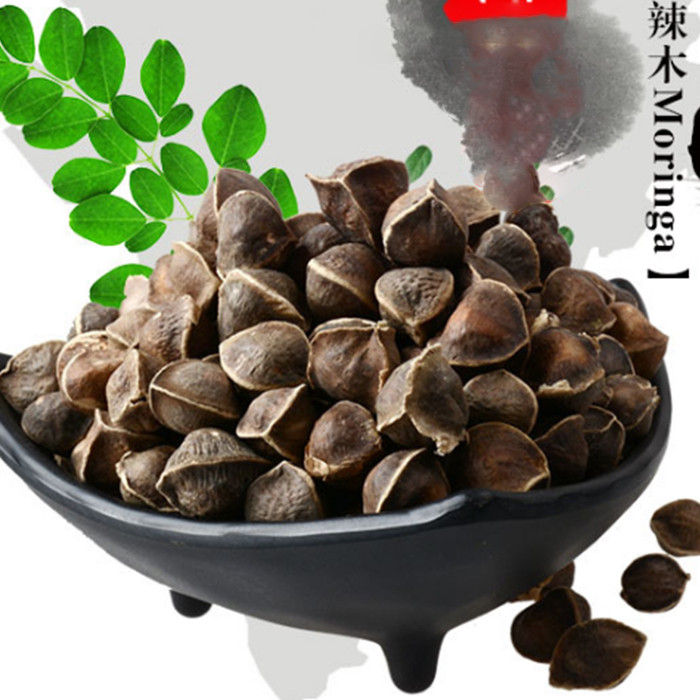 10pcs/bag Moringa seeds moringa oleifera seeds Edible seed