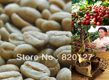 500g High Quality 2013 Fresh China Yunnan Small Arabica AA Green Raw Coffee Beans,Grow On 1800M China YUN NAN MOUNTAIN
