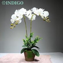 INDIGO- Event Arrangment Orchid+2