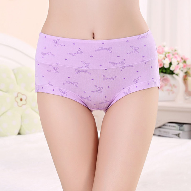 f79e299e552 Free Shipping Women Underwear Cotton Panties Seamless Sexy Briefs High  Quality Calcinha Intimates Underpants Ropa S-4XL