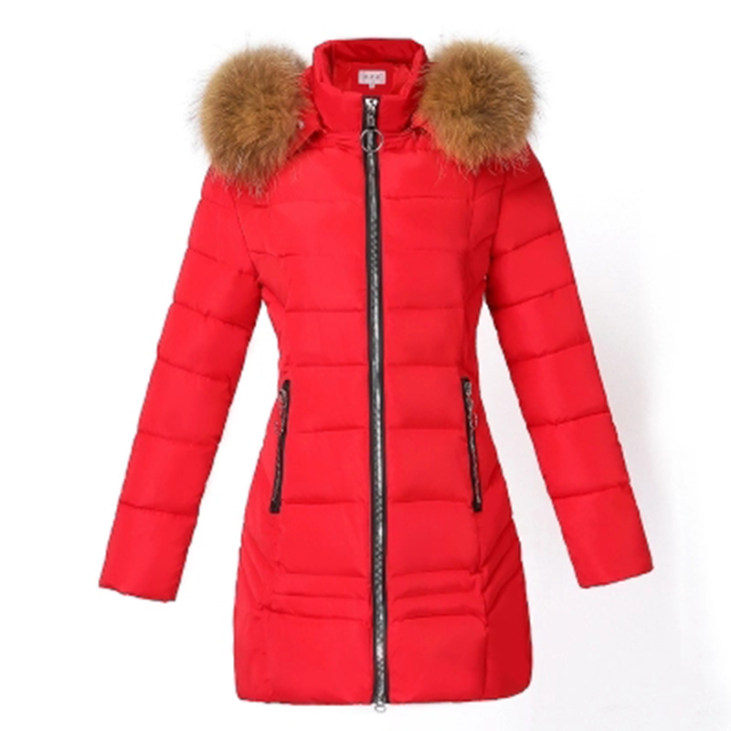 2018 Women Winter Warm Jacket Coat Female Short Slim Cotton Padded Parkas Coat with Fur Hooded