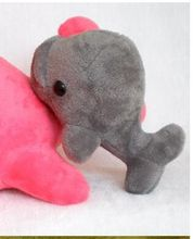 small cute gray toy big head dolphin toy stuffed whale doll gift about 20cm