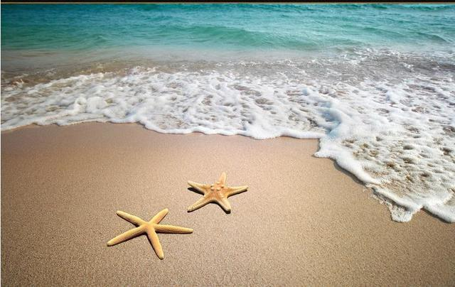 3d Floor Tiles Vinyl Wallpaper Custom Brick Wall Painting Starfish Beach Wallpapers For
