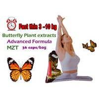 100% efectivo adelgazamiento avanzado la fuerte planta salvaje de mariposa extractos botánicos quema de grasa no daidaihua