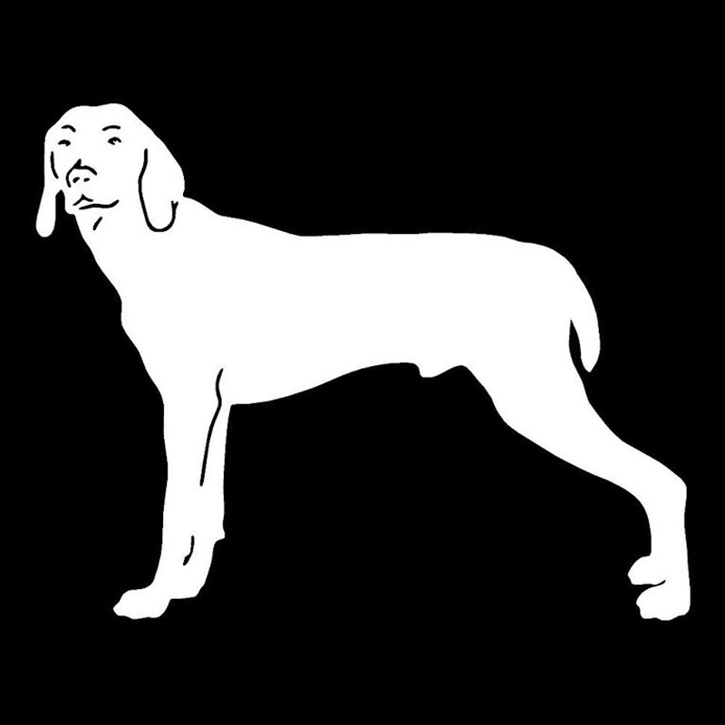 Animal Collectables Funny WEIMARANER Dog Taxi Sevice vinyl car decal