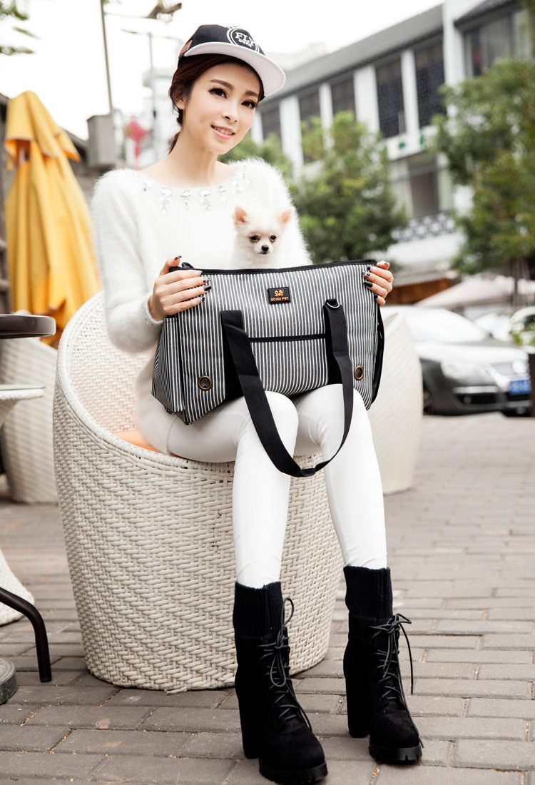 Dog Carrier  (4)