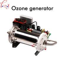 Emaille rohr ozon-generator CH-PC18G kleines doppel wassergekühlten ozonisator generator für abwasserbehandlung 110/220 V 1 STÜCK