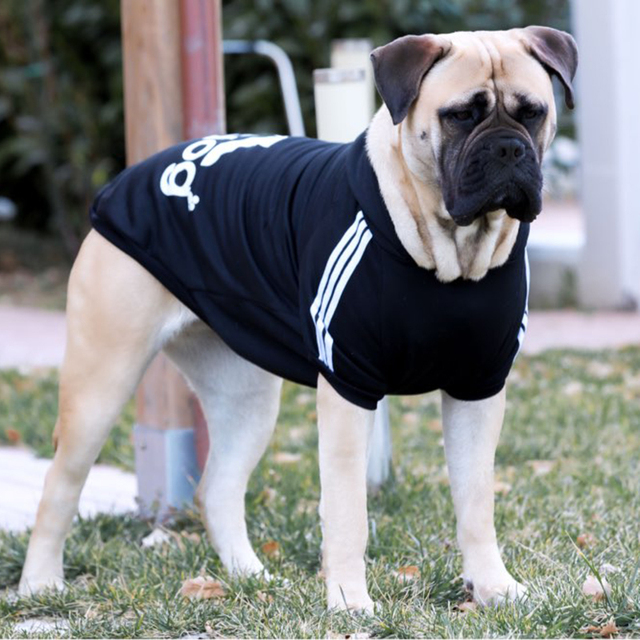 Donbook Large Size Dog Clothes for Big Dogs Golden Retriever Winter Pet Hoodie Sportswear 2XL-9XL 5