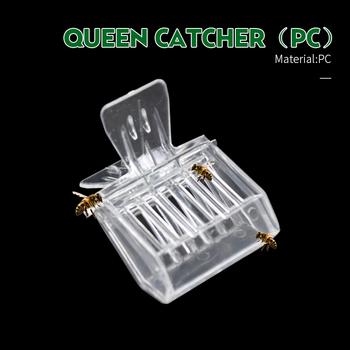 2 sztuk Bee Queen Catcher bezbarwny przezroczysty z tworzywa sztucznego klip klatka sprzęt pszczelarski narzędzie pszczelarz wyposażyć pokój izolacji tanie i dobre opinie QC05 Bee tool queen cage High Quality Plastic 1 x Beekeeping Clip Insects