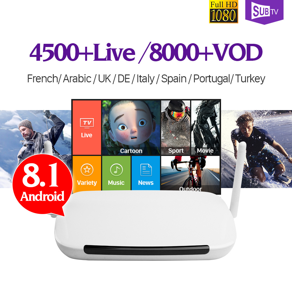 цены Smart Q9 Quad Core RK3229 1G+8G Android TV Box With 8000+ VOD IPTV French Arabic Italy Subscriptions 1 Year SUBTV Account